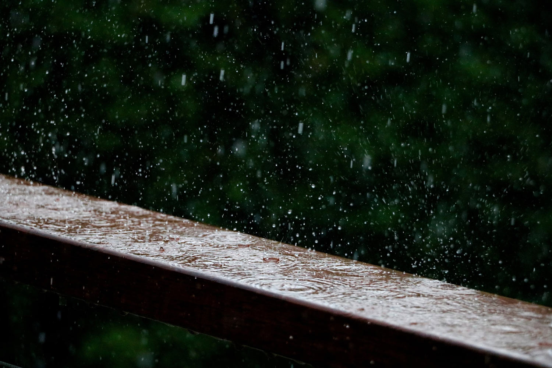 rain-on-wood