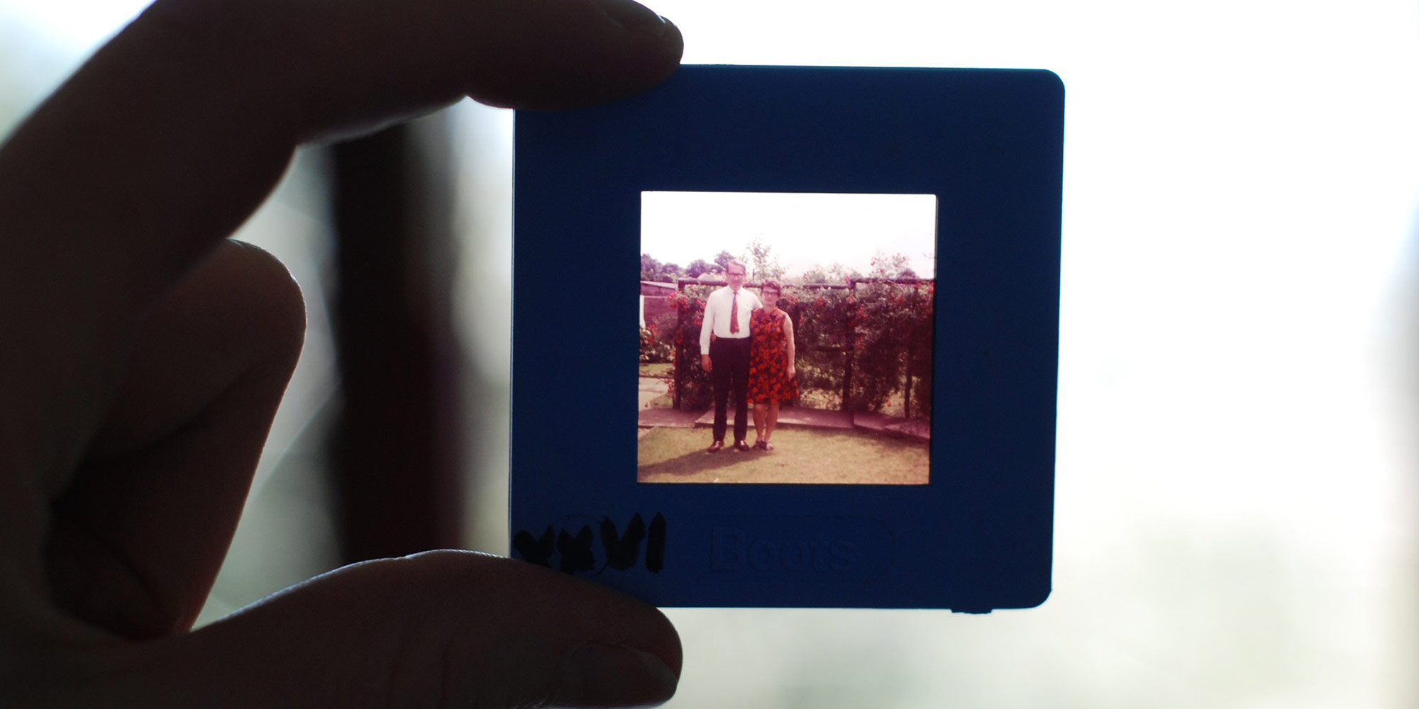 photo-in-hand