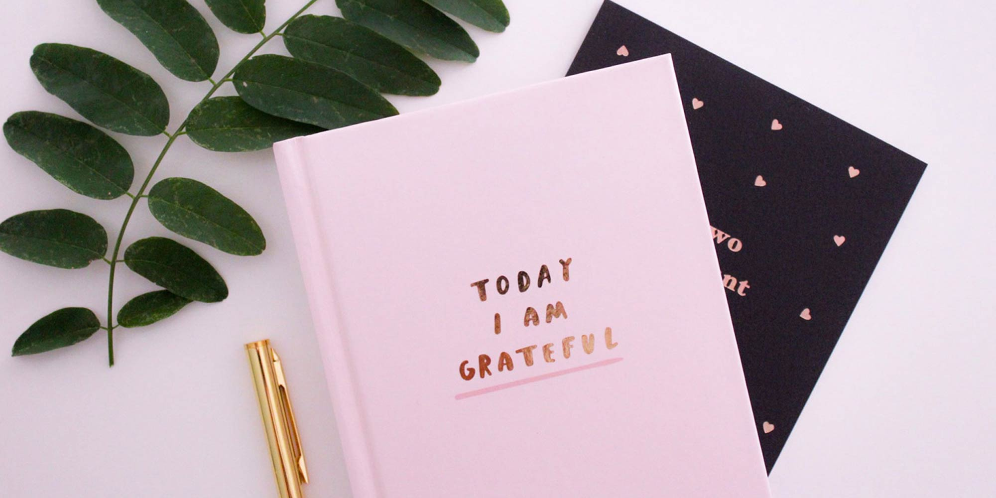 Gratitude journals and greenery on a pink background