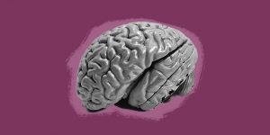Grayscale image of a brain against a purple background