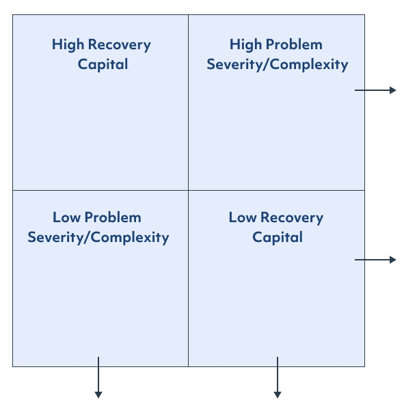 Recovery capital diagram